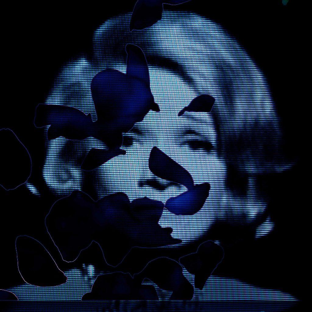 Marlene 01, 120 cm x 120 cm, Ed.01/06, 2008